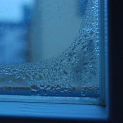 Jak snížit nebo zvýšit vlhkost v bytě