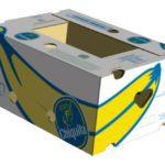 Jak použít a kde sehnat krabice na stěhování?