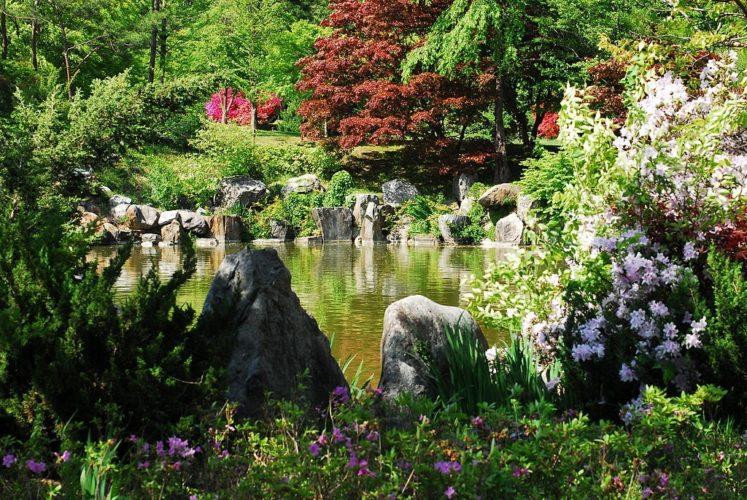 Zahradní jezírko svépomocí. Rady a tipy.