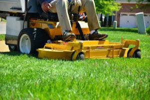 Víte, jak na provzdušnění a vertikulaci trávníku? Poradíme vám.