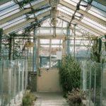 Jak postavit skleník svépomocí