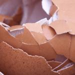 6 tipů jak vyrobit přírodní hnojivo pro kytky