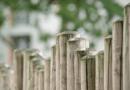 Plot mezi sousedy – Jak by měla vypadat dohoda?