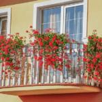 Nechejte svůj balkón rozkvést